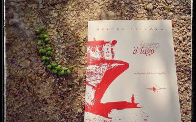 IL LAGO nella recensione-musicale (playlist) di Lorenzo Lampis