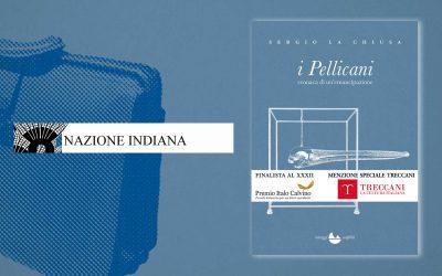 I Pellicani – recensione di Giorgio Mascitelli su Nazione Indiana