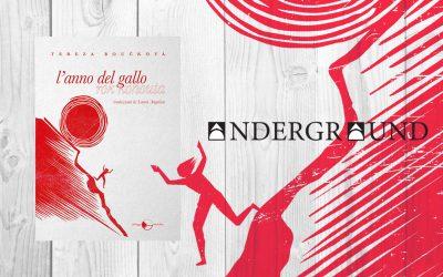 L'anno del gallo – recensione di Martina Mecco su Andergraund